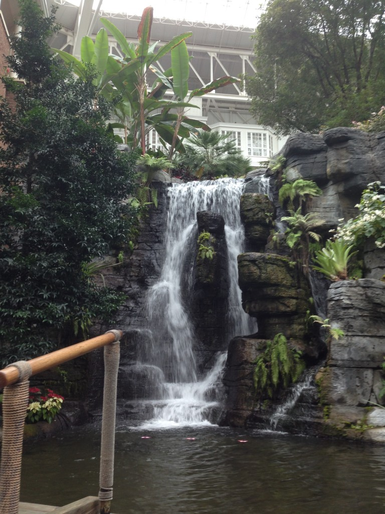 Well Dined   Gaylord Opryland