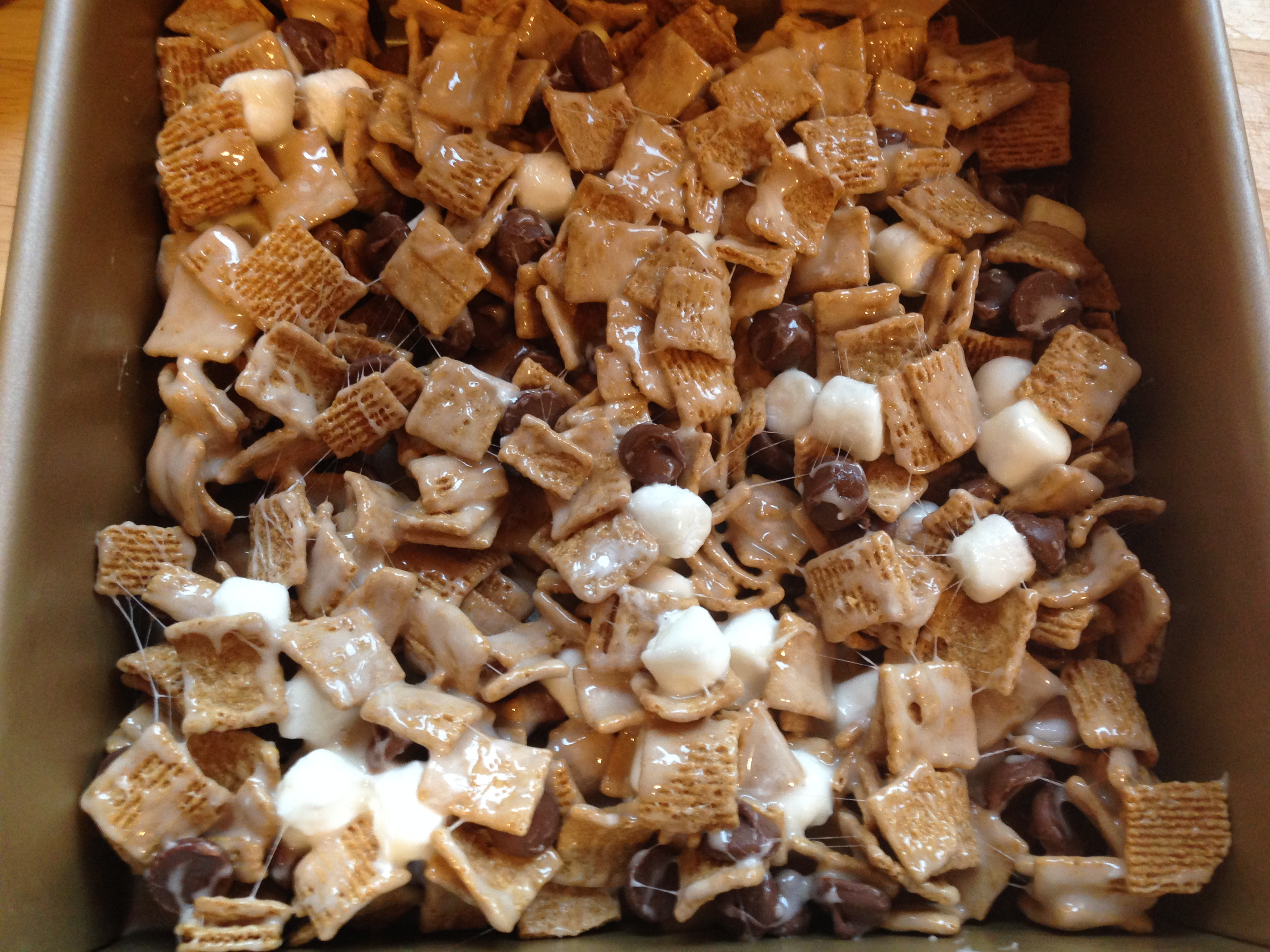 Well Dined | S'mores Treats