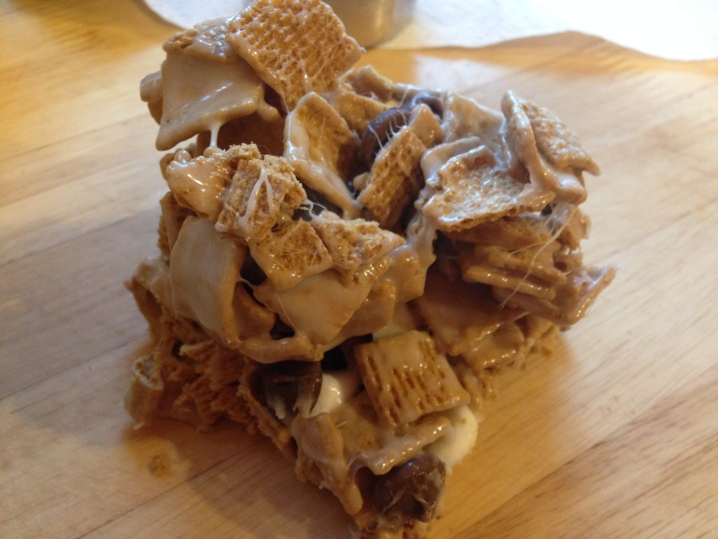 Well Dined   S'mores Treats