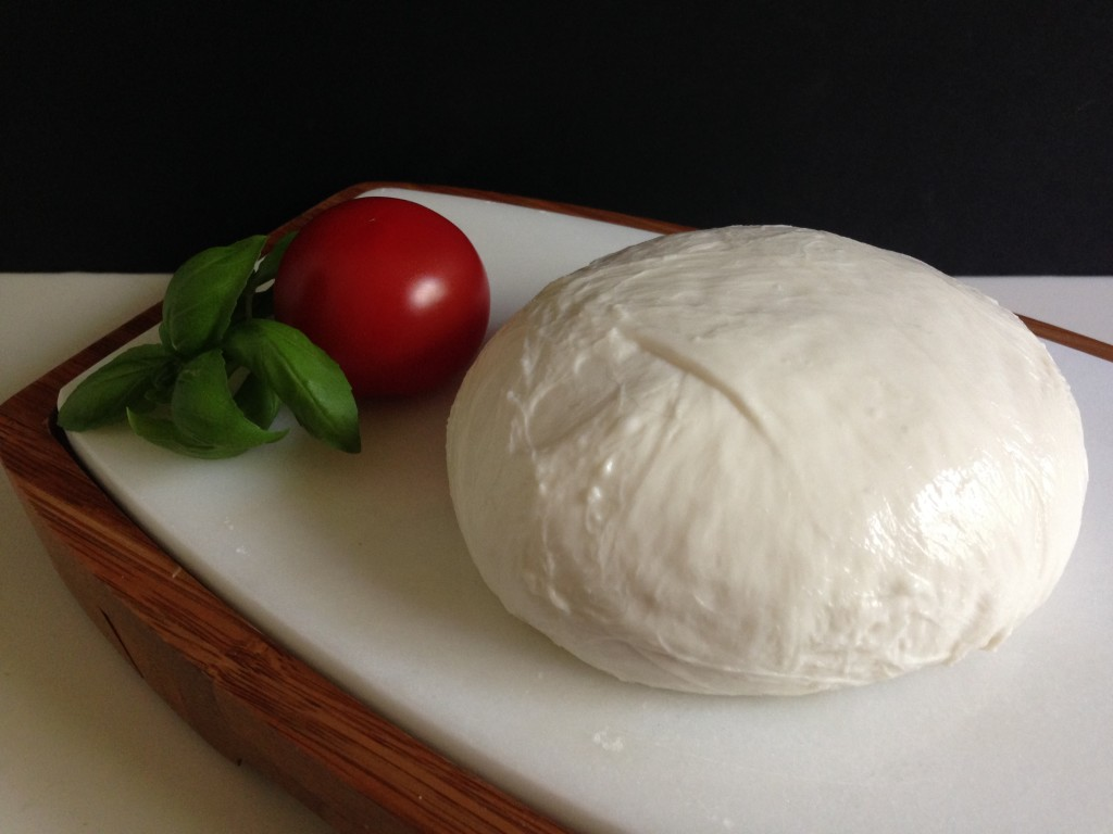 Well Dined | Homemade Mozzarella