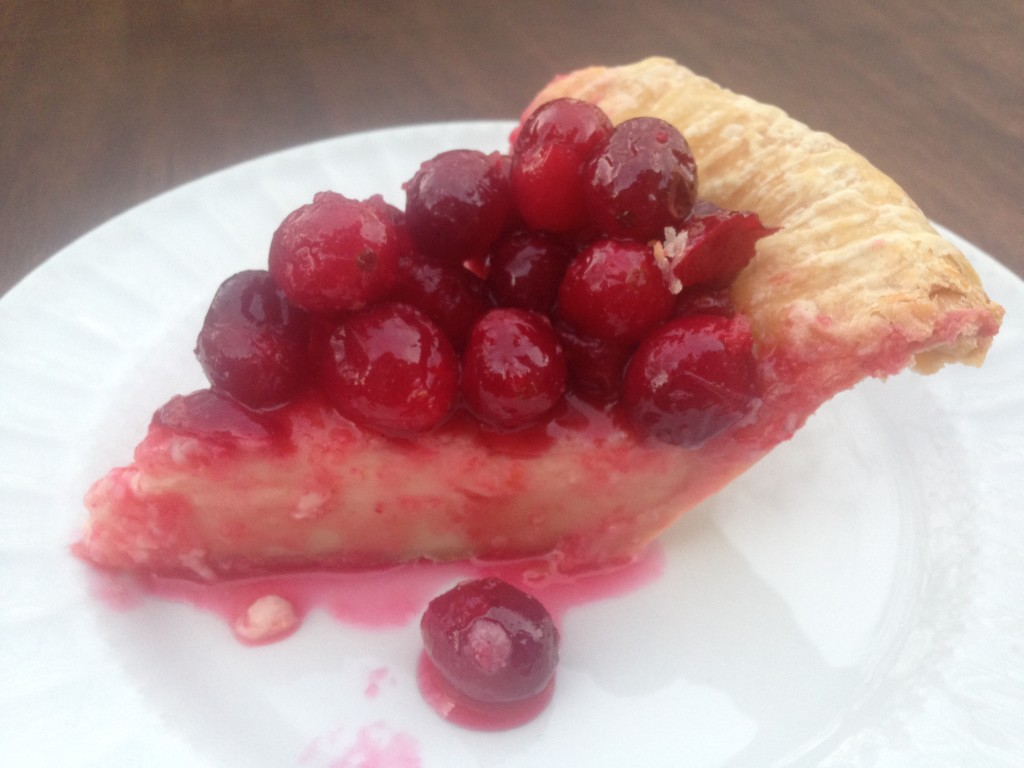 Well Dined | Cranberry Custard Pie
