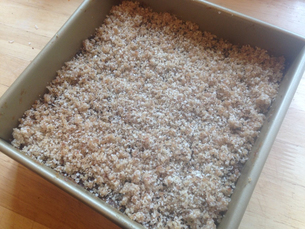 Well Dined   No Bake Vegan Date and Nut Bars