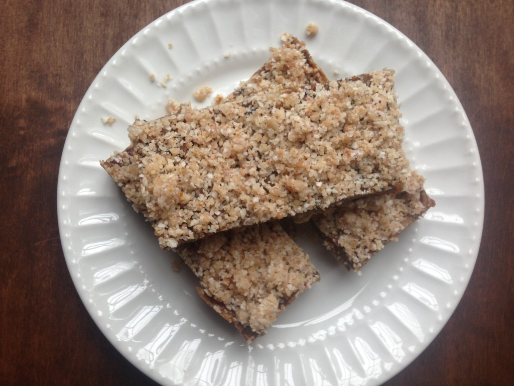 Well Dined | No Bake Vegan Date and Nut Bars