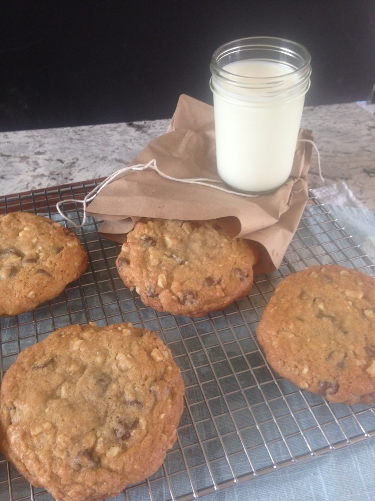 Well Dined | Doubletree Hotel Chocolate Chip Cookies